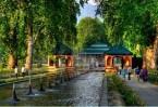 Srinagar – Local sightseeing 50 Kms