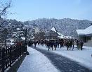 Hamirpur to Shimla Manali Tour